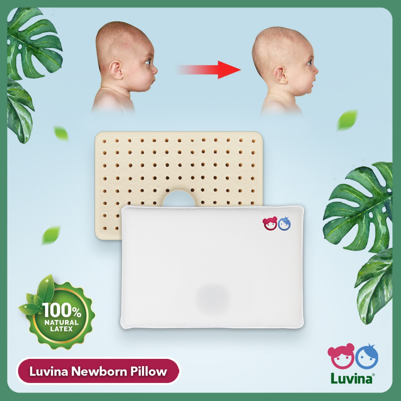 BANTAL ANTI PEYANG LUVINA NEWBORN PILLOW BANTAL LATEX BAYI BUKAN BABYBEE BUKAN DOOGLEE JAN ETHES KEPALA PEYANG LUVINA NEWBORN PILLOW NATURAL LATEX PLAGIOCEPHALY POSISI TIDUR
