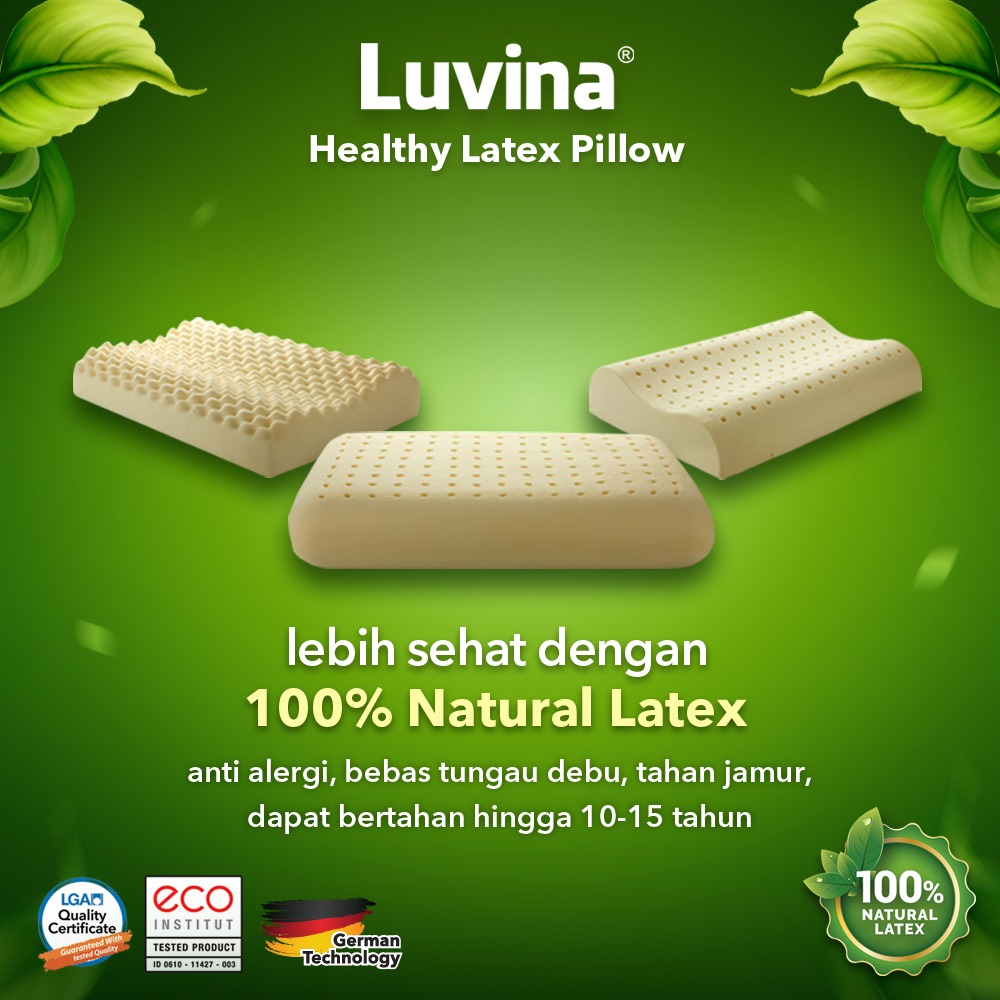 BANTAL LATEX ALAMI BANTAL 100% NATURAL LATEX BANTAL ANTI ALERGI BANTAL ANTI DENGKUR BANTAL ANTI NYERI LEHER BANTAL BEBAS DENGKUR BUKAN DUNLOPILLO